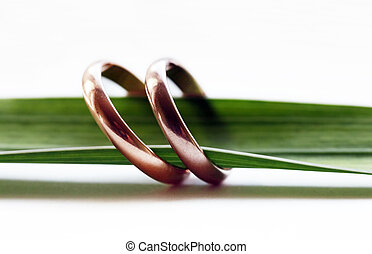 Wedding ring - Two wedding rings on a green sheet