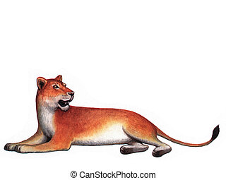 Animal Lioness - Colored drawing on the paper animal Lioness...