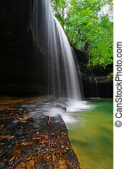 Alabama Forest Waterfall Landscape