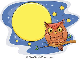 Night Owl - Illustration of an Owl Perched on a Branch With...