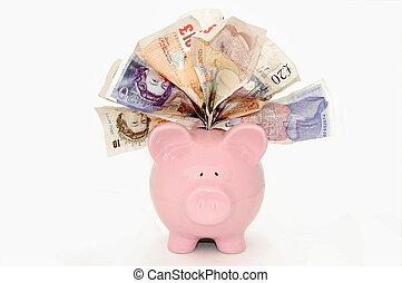 Piggy bank - Piggybank stuffed with bank notes