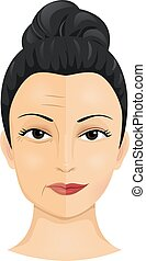 Cosmetic Surgery - Illustration of a Woman Showing the...