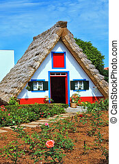The house with a thatched roof
