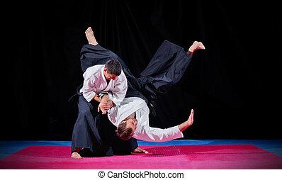 dos, marcial, artes, luchadores,