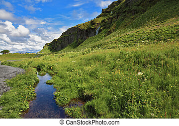 Green meadows - Neighborhood Seljalandsfoss. Iceland in...