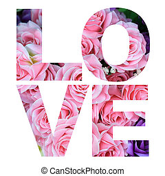 word love made from rose flower picture on white background