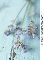 Lavender - Bunch of lavender on a rustic table closeup...