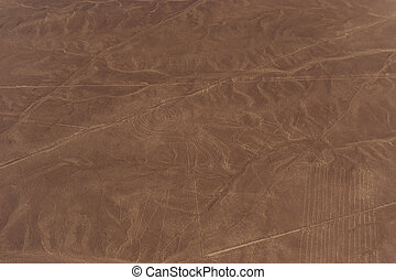Nazca Lines and geoglyphs - Desert View Nazca bird's-eye...
