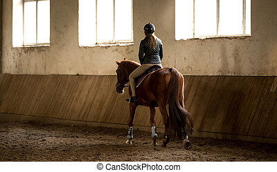 woman doing horseback riding in manege - Photo from back of...