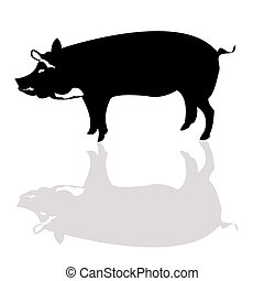 Pig silhouette - Vector pig