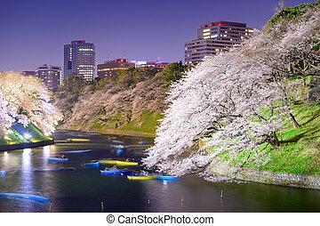 Tokyo Japan Spring Night - Tokyo, Japan at Chidorigafuchi...