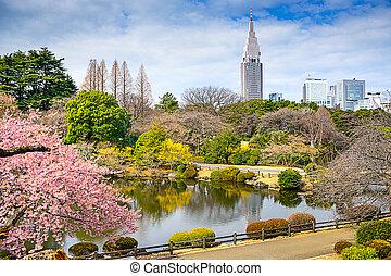 Shinjuku, Tokio, parque,