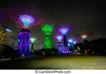 Towers of Gardens by the Bay in Singapore at Night -...