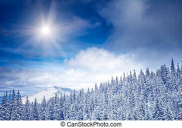 WInter Landscape - Winter landscape in Carpathian mountains...