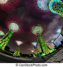 Fisheye Shot of Illuminated Towers at Garden by the Bay in...
