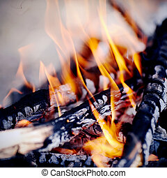 Bonfire - Bright campfire. Fire in marching conditions.