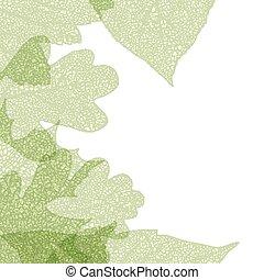 Leaf skeletons autumn tenplate. EPS 10 - Leaf skeletons...