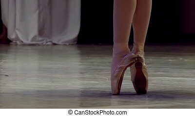 Ballerina Dancing - Ballerina shows classic ballet pas Slow...