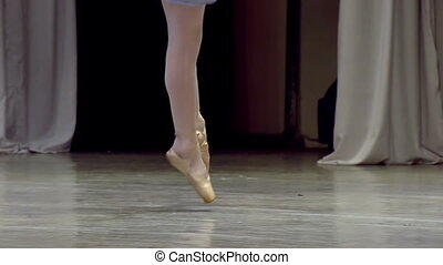 Solo Dance Ballerina - Ballerina shows classic ballet pas...