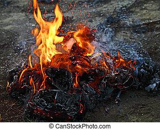 Burning Trash - Dangerous burning trash products: toxic...