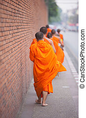 Buddhist Monks walking to receive food through the Wall