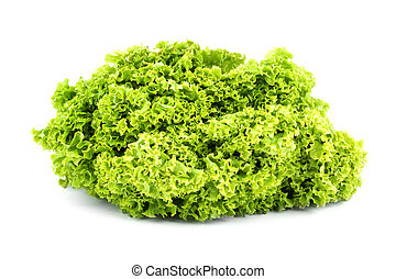 Green butter Lettuce isolated on white background