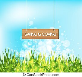 Spring is coming concept with wood sign