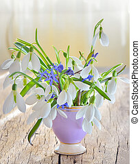 snowdrops in vase on old wood - bouqet of snowdrops in vase...