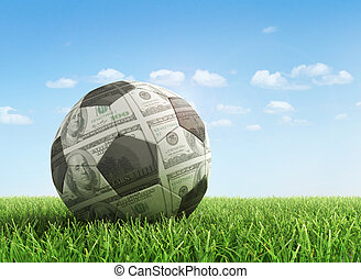 Sport and money concept Dollar ball in the green grass