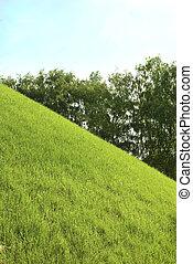 green grass on a hill