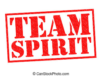 TEAM SPIRIT red Rubber Stamp over a white background.