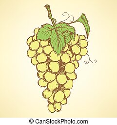 Sketch grape with leaves in vintage style