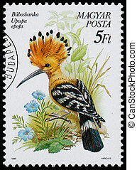 Stamp printed in Hungary shows the Hoopoe - HUNGARY - CIRCA...