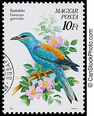 Stamp printed in Hungary shows the European roller - HUNGARY...