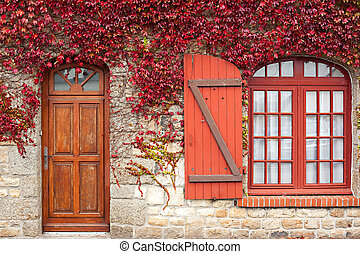 autumn red vine on house - red autumn vine climbing...