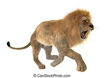 Angry Lion - 3D digital render of an angry running male lion...