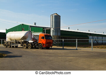 Truck on a chicken farm - Large truck on a chicken farm....