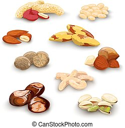 Nuts Decorative Set - Nuts decorative icons set with peanut...
