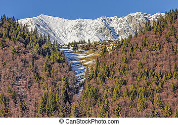 Piatra Craiului mountains, Romania. - Piatra Craiului...