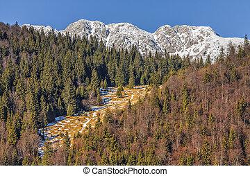 Piatra Craiului National Park, Romania - Piatra Craiului...