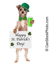 St Patricks Day Dog With Beer
