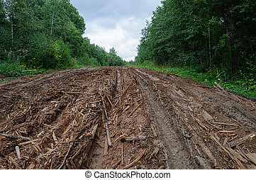 Wet dirt road with piles of woody debris - Rural empty dirty...