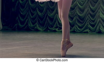 Graceful Ballerina - Ballerina shows classic ballet pas Slow...
