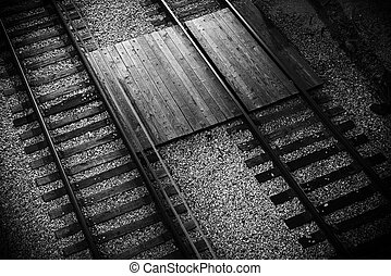 Railroad Tracks Closeup From Above. Black and White Railroad...