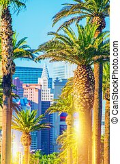 Las Vegas Strip Scenery. Vegas Palms and the Strip in...
