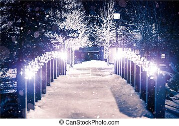 Park Bridge in Winter - Park Bridge Holiday Illumination in...