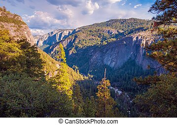 Sierra Nevada Landscape. Yosemite Valley, United States.