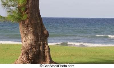 Caribbean Sea tropical water - Tropical Caribbean sea water...