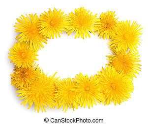 Frame made of yellow dandelions