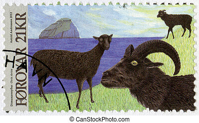FAROE ISLANDS - 2012: shows Dimun Sheep, series Animals of...